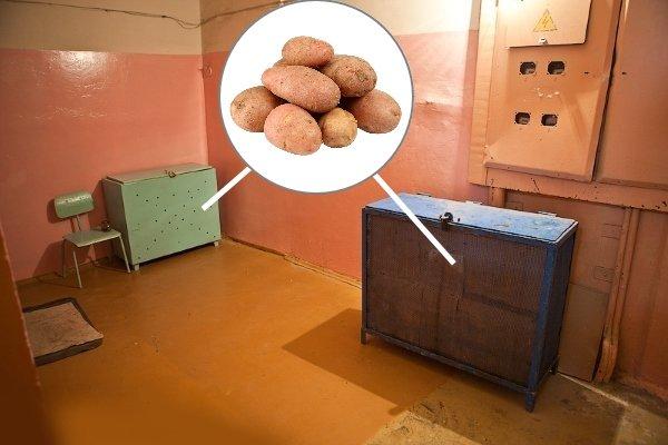 Хранение картошки в подъезде