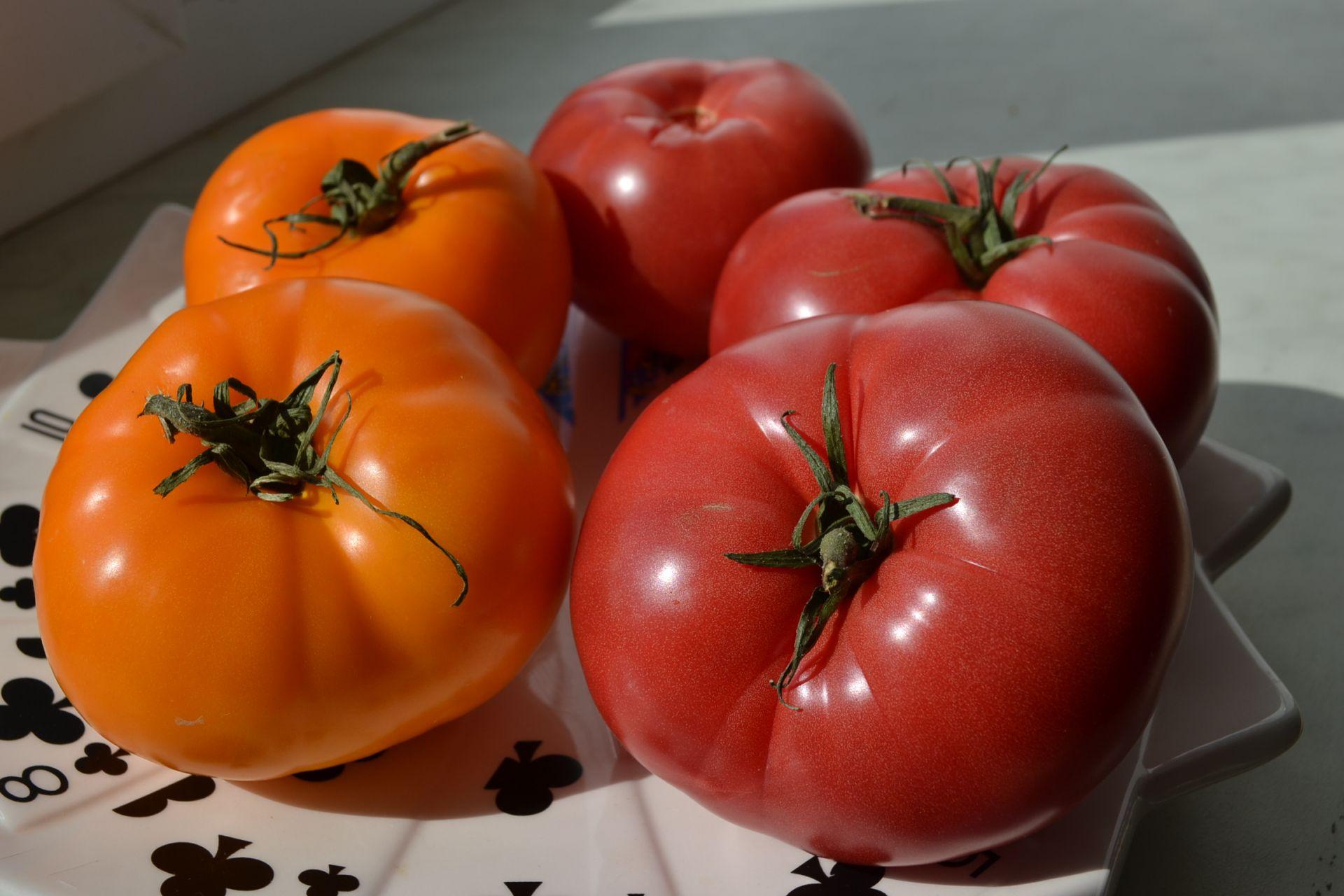 Салатные томаты
