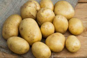 Картофель Голубизна: преимущества, описание, отзывы, видео, выращивание и уход