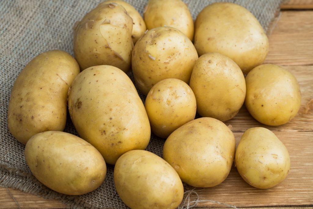 История селекции картофеля Голубизна