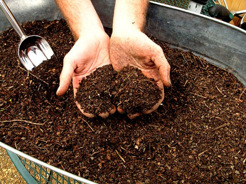 Подготовка грунта перед посадкой семян или саженцев
