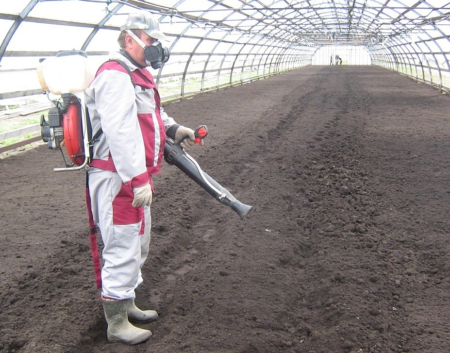 Способы обеззараживания почвы в теплице