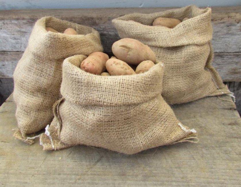 Хранение урожая картофеля в мешках