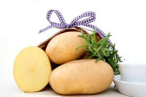 Картофель Джелли: характеристика, выращивание, отзывы