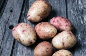 Картофель Пикассо: описание, выращивание, отзывы