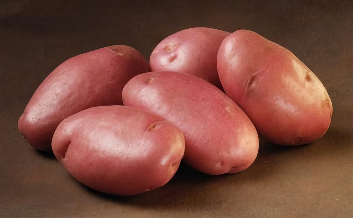 Картофель Сарпо Мира
