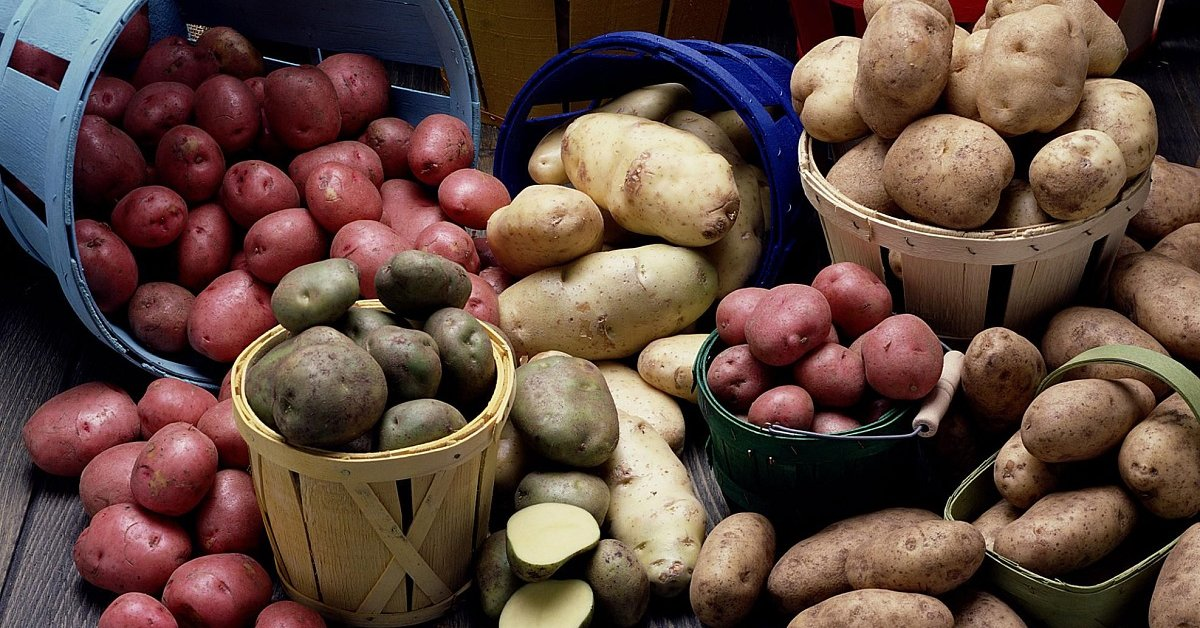 Лучшие сорта картофеля для пюре