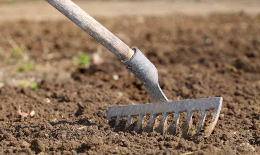 Подготовка почвы к посадке картофеля
