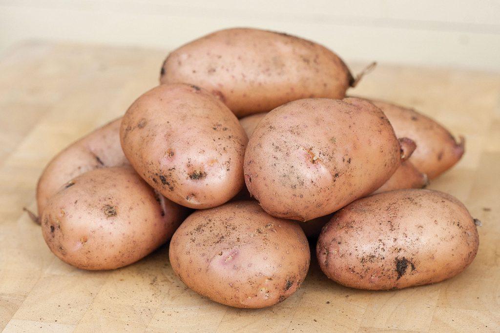Преимущества Жуковского раннего картофеля