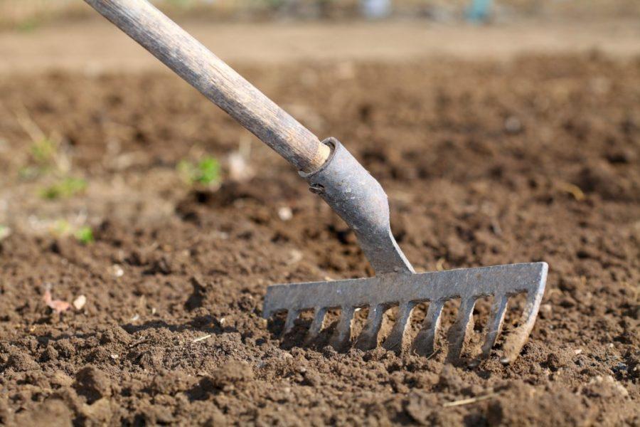 Подготовка грунта к посадке картофеля
