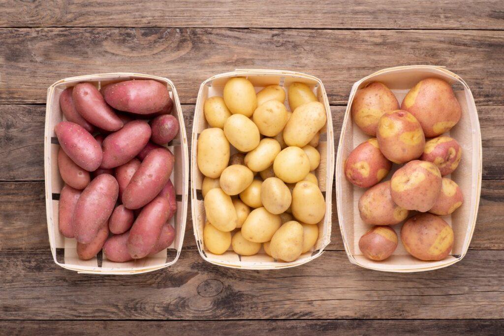 Преимущества и недостатки поздних сортов картофеля