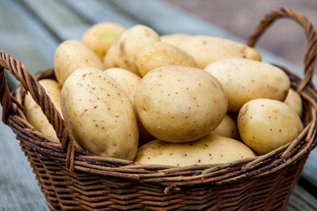 Ветразь картофель